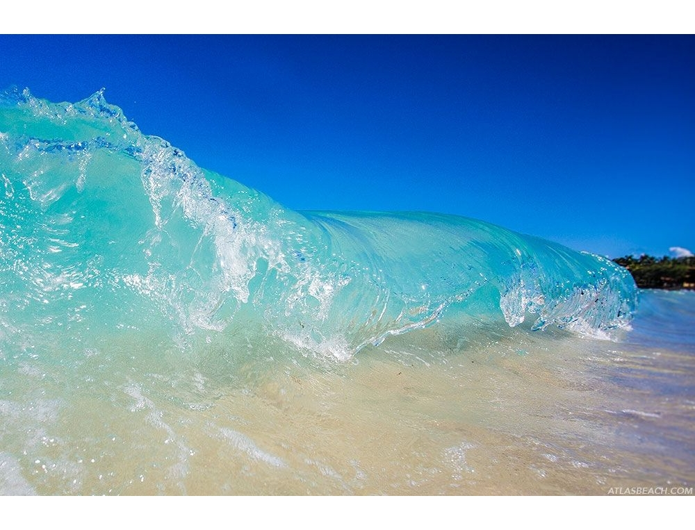 Jelly wave